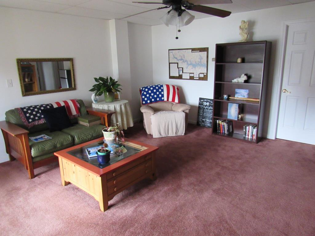 Living Area - Lower Level